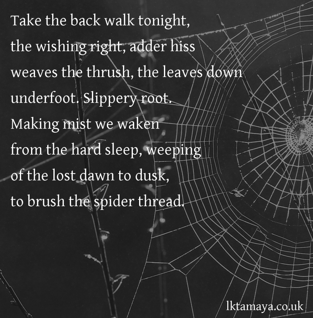 Spiderpath